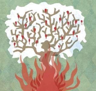El Ceibo, la flor que brotó en el fuego