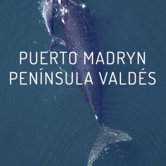 Puerto Madryn<br> 6D/5N